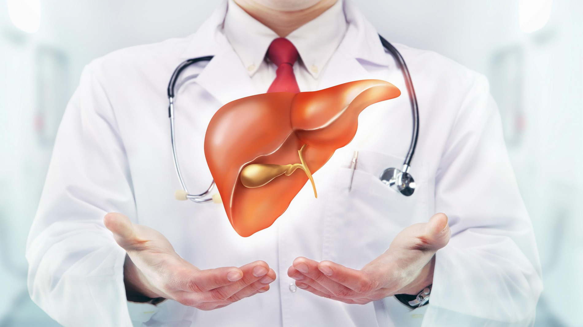 digestive-and-liver-health-hero